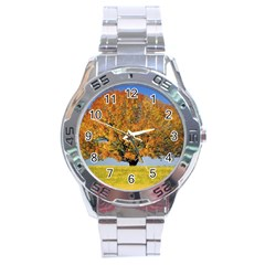 Tree1 Stainless Steel Analogue Men's Watch