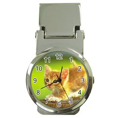 cat5 Money Clip Watch