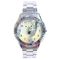 Bear1 Stainless Steel Analogue Men's Watch