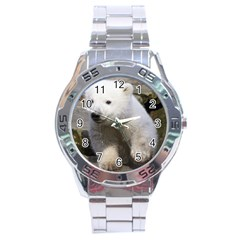 Bear3 Stainless Steel Analogue Men's Watch