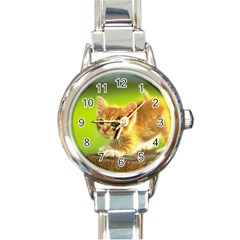 cat5 Round Italian Charm Watch