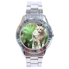 Cat2 Stainless Steel Analogue Men's Watch