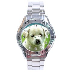 Dog1 Stainless Steel Analogue Men's Watch