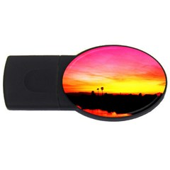 Pink Sunset 4gb Usb Flash Drive (oval)