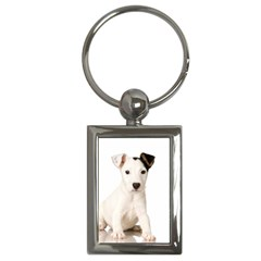 55190649 Key Chain (rectangle)