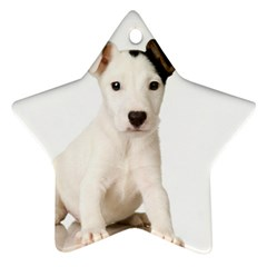 55190649 Twin-sided Ceramic Ornament (Star)