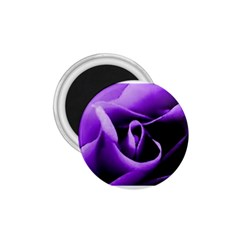 Purple Rose Small Magnet (Round)