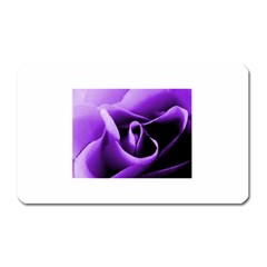 Purple Rose Large Sticker Magnet (Rectangle)