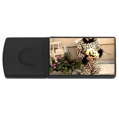 Trick Or Treat Baby 4gb Usb Flash Drive (rectangle)