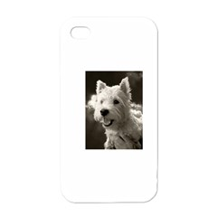 Westie Puppy White Apple Iphone 4 Case