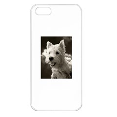 Westie Puppy Apple Iphone 5 Seamless Case (white)