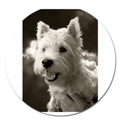 Westie Puppy Extra Large Sticker Magnet (round)