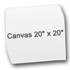 Canvas 20  x 20  (Unframed)