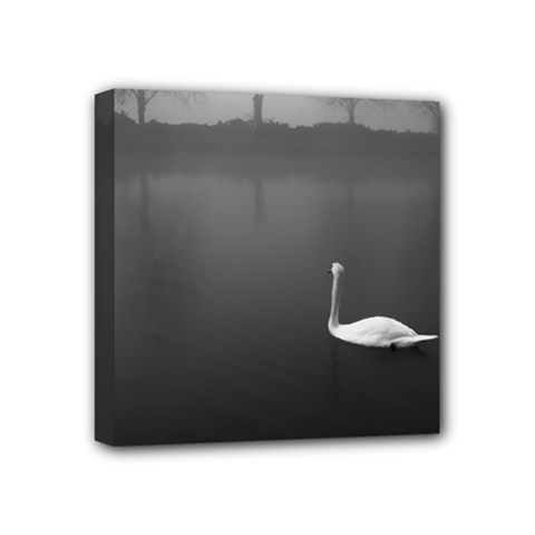 Swan 4  X 4  Framed Canvas Print by artposters