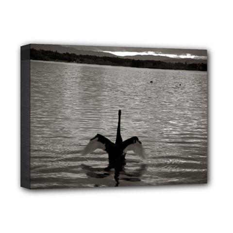 Swan, Canberra Deluxe Canvas 16  X 12  (stretched)  by artposters
