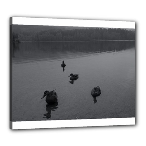 Ducks 20  X 24  Framed Canvas Print