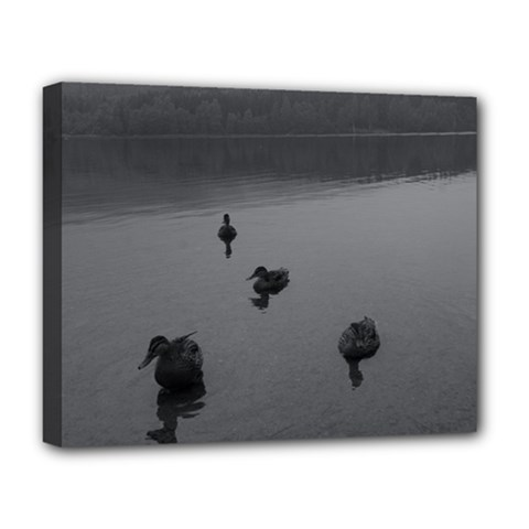 Ducks Deluxe Canvas 20  X 16  (stretched)