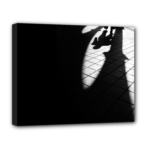 Shadows Deluxe Canvas 20  X 16  (stretched) by artposters
