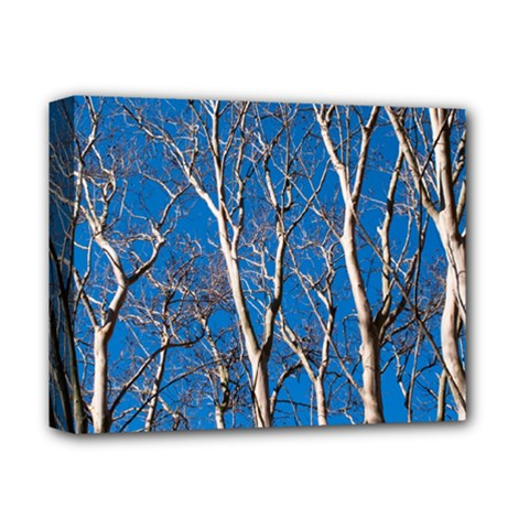 Trees On Blue Sky Deluxe Canvas 14  X 11  (stretched) by Elanga