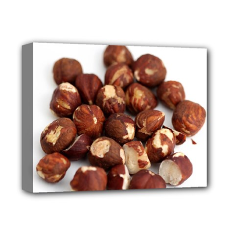 Hazelnuts Deluxe Canvas 14  X 11  (framed) by hlehnerer