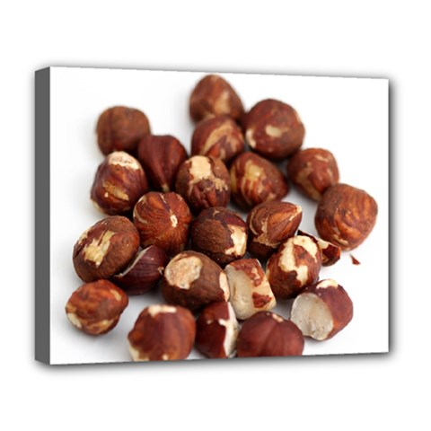 Hazelnuts Deluxe Canvas 20  X 16  (framed) by hlehnerer