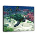 Sea Turtle Canvas 14  x 11  (Stretched) View1