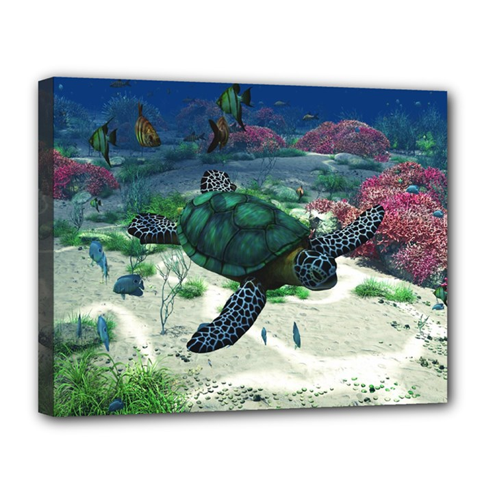 Sea Turtle Canvas 14  x 11  (Stretched)