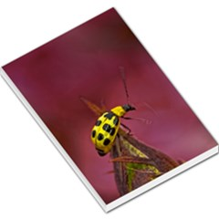 Yellow Ladybug  Large Memo Pad by designsbyvee