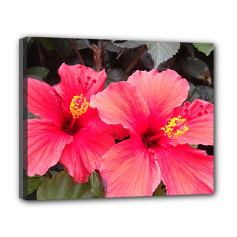 Red Hibiscus Deluxe Canvas 20  X 16  (framed) by ADIStyle