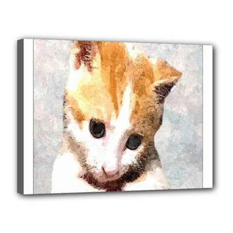 Sweet Face :) Canvas 16  X 12  (framed) by mysticalimages