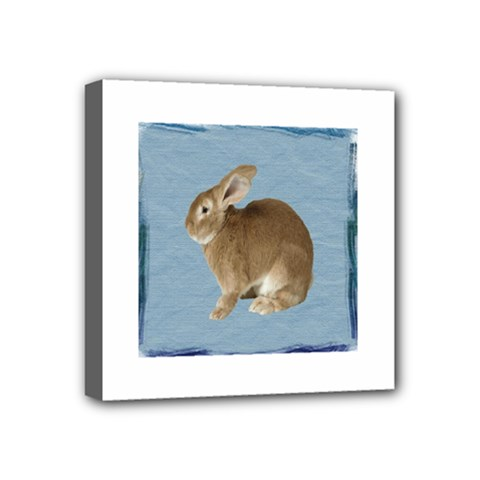 Cute Bunny Mini Canvas 4  X 4  (framed)