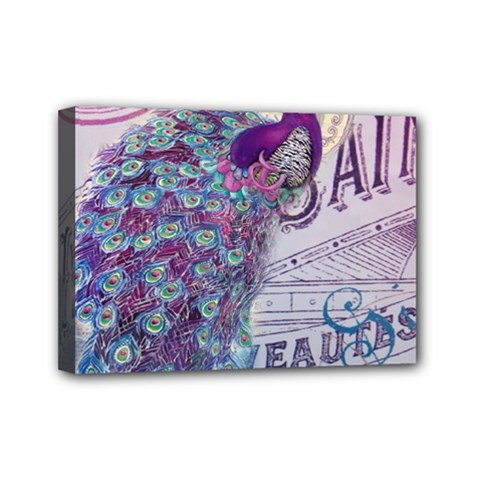 French Scripts  Purple Peacock Floral Paris Decor Mini Canvas 7  X 5  (framed) by chicelegantboutique