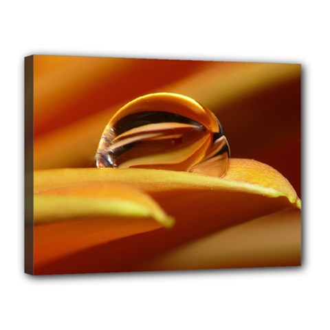 Waterdrop Canvas 16  X 12  (framed) by Siebenhuehner