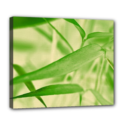 Bamboo Deluxe Canvas 24  X 20  (framed) by Siebenhuehner