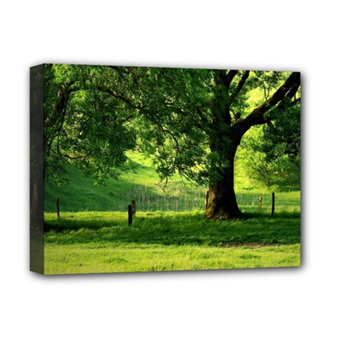 Trees Deluxe Canvas 16  X 12  (framed)  by Siebenhuehner