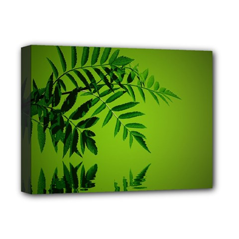 Leaf Deluxe Canvas 16  X 12  (framed)  by Siebenhuehner