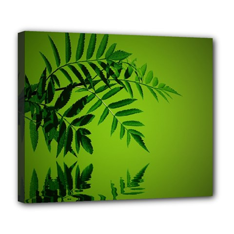 Leaf Deluxe Canvas 24  X 20  (framed) by Siebenhuehner