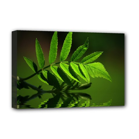 Leaf Deluxe Canvas 18  X 12  (framed) by Siebenhuehner