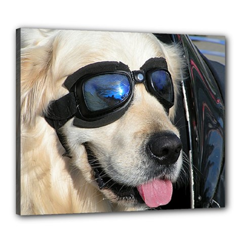 Cool Dog  Canvas 24  X 20  (framed) by Siebenhuehner