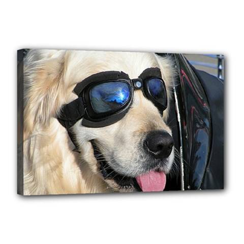 Cool Dog  Canvas 18  X 12  (framed) by Siebenhuehner
