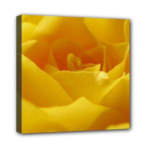 Yellow Rose Mini Canvas 8  X 8  (framed) by Siebenhuehner