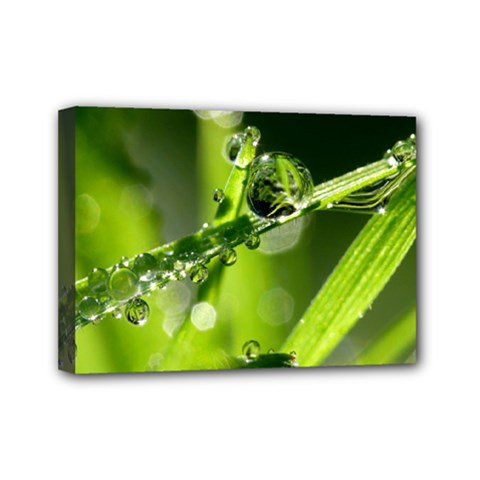 Waterdrops Mini Canvas 7  X 5  (framed) by Siebenhuehner