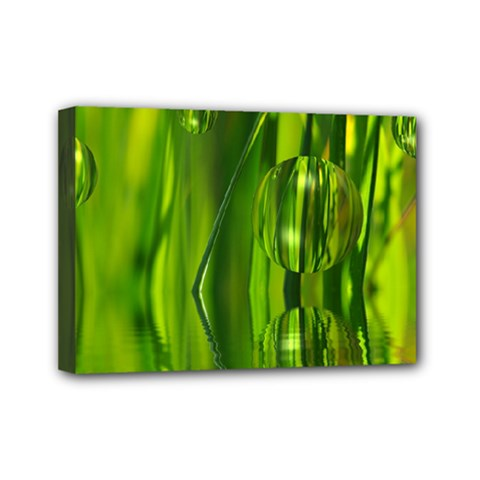 Green Bubbles  Mini Canvas 7  X 5  (framed) by Siebenhuehner
