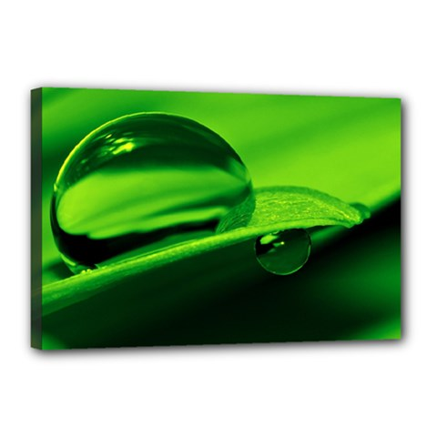 Green Drop Canvas 18  X 12  (framed) by Siebenhuehner