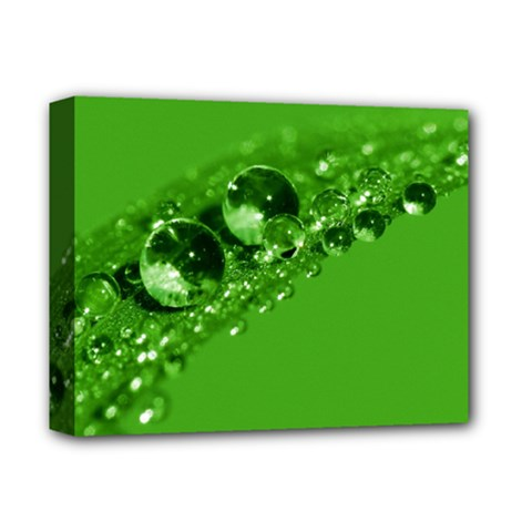 Green Drops Deluxe Canvas 14  X 11  (framed) by Siebenhuehner