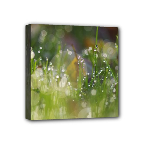 Drops Mini Canvas 4  X 4  (framed) by Siebenhuehner