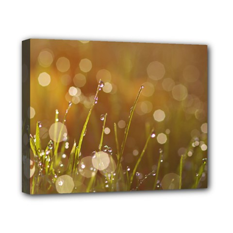 Waterdrops Canvas 10  X 8  (framed) by Siebenhuehner