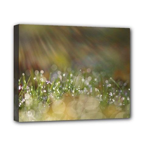 Sundrops Canvas 10  X 8  (framed) by Siebenhuehner