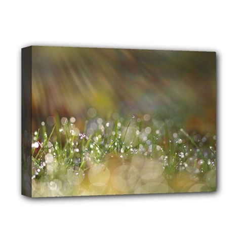 Sundrops Deluxe Canvas 16  X 12  (framed)  by Siebenhuehner