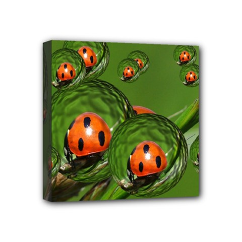 Ladybird Mini Canvas 4  X 4  (framed) by Siebenhuehner